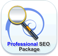 AoG Design Professional SEO Package